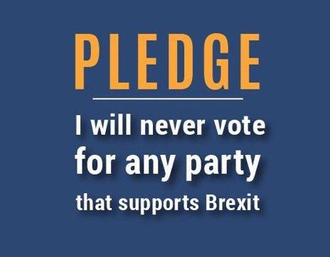 never_vote_brexit